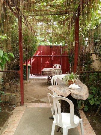 One Rover's Place : Garden
