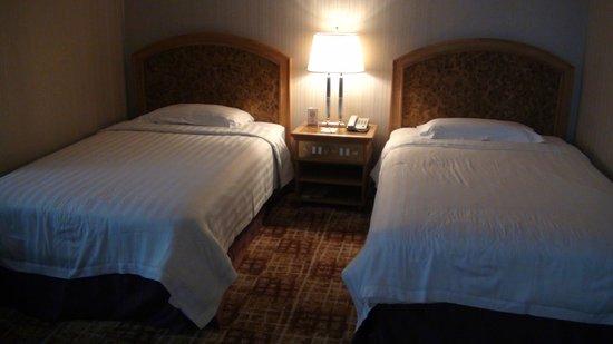 Century Plaza Hotel: Room 1 Beds