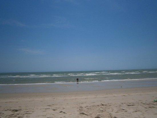 Cera Resort Chaam: la plage à proximité