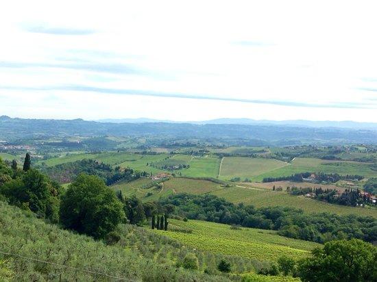 Agriturismo Cesani: Stunning view