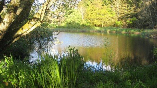 Mandinam: Lake behind the sheperds hut