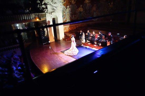 Palau de la Musica Orfeo Catala: Flamenco performance at the Palace