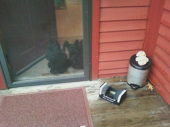 Shaker Mill Inn: Container for dog waste right outside my door - thought it was cute with the stuffed pup on it.