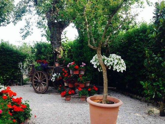 Villa Mirella Beach: giardino