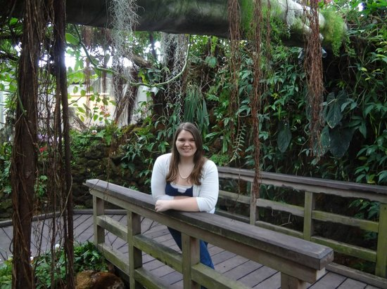 United States Botanic Garden : I'm basically an Amazon queen.