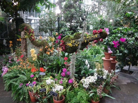 United States Botanic Garden : So pretty!