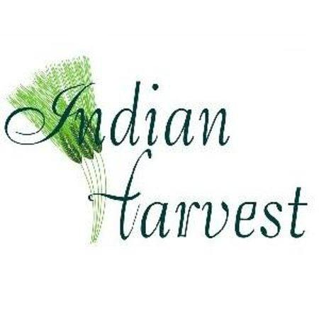 Indian Harvest Restaurant Naperville Il