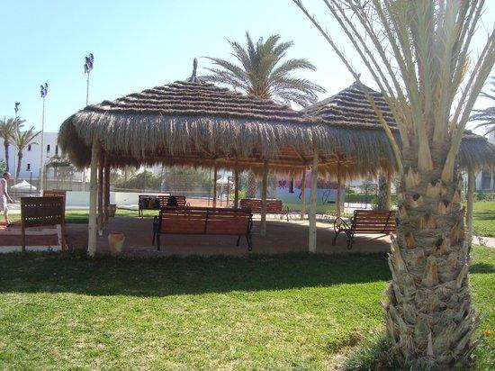 Hôtel Palm Azur : Petit coin d'ombre près de la petanque