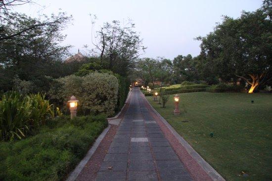 The Oberoi Rajvilas : Garden