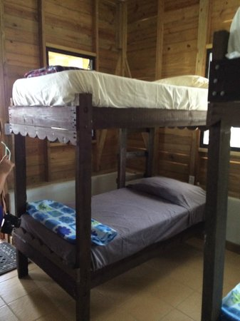 Monkey Bay Wildlife Sanctuary : Bunks