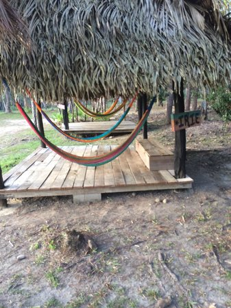 Monkey Bay Wildlife Sanctuary: Hammocks are all over the compound