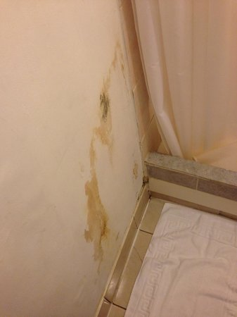 37 Collingham Place London: Unidentified Stain