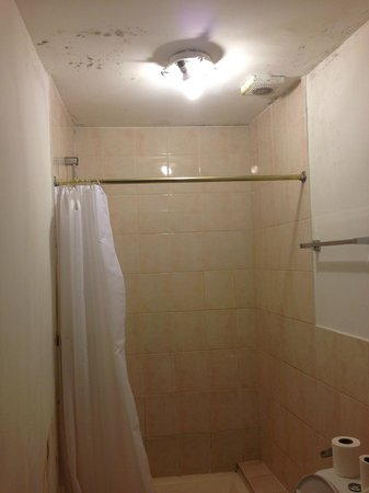 37 Collingham Place London: You can see the mold in the shower
