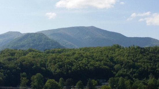 Best Western Smoky Mountain Inn : View from our room