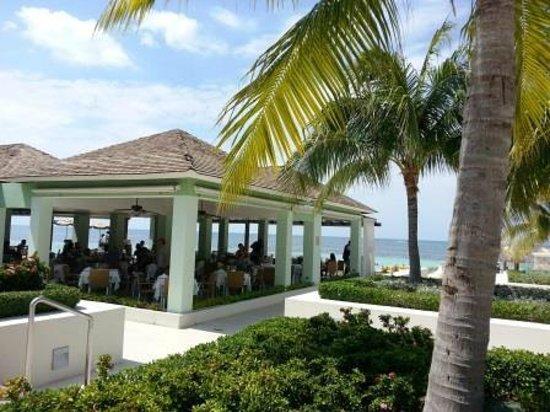 Iberostar Grand Rose Hall Port Maria Buffet Restaurant Picture - Iberostar grand montego bay