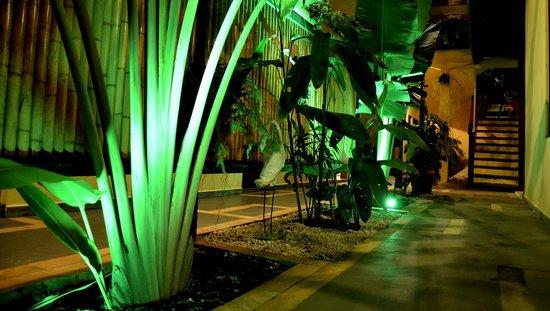 Pousada Camburioca: Jardim