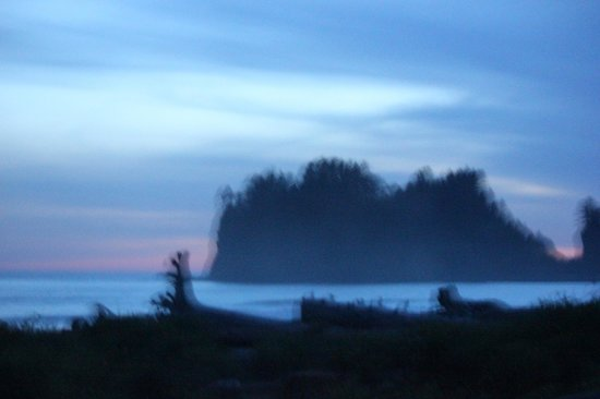 Quileute Oceanside Resort: La Push Stacks