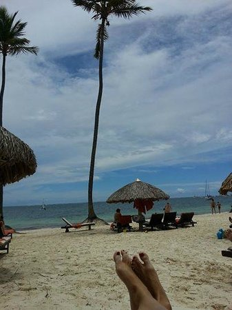 Dreams Palm Beach Punta Cana: My daily view.....aaahhhh!  It was the best!