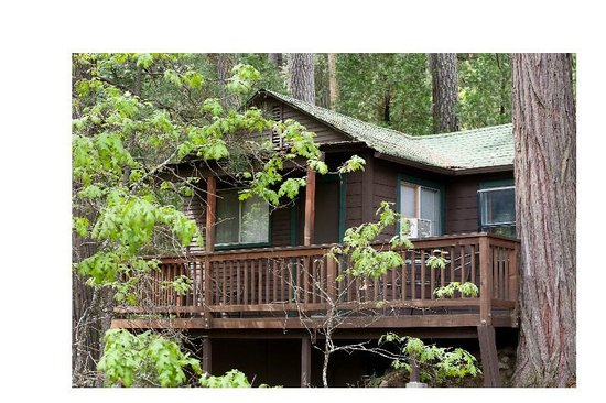 The Forks Resort: One Bedroom Cabin