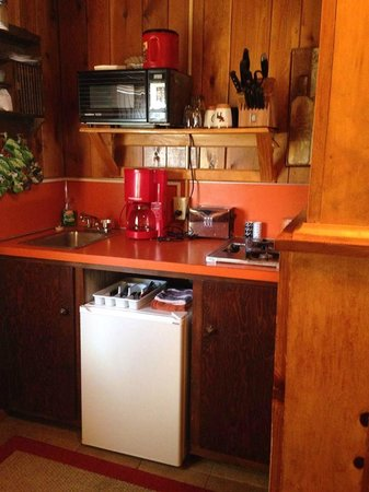 Mountain Motel : Kitchen area