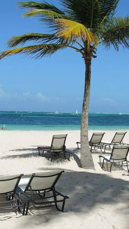 Secrets Royal Beach Punta Cana: Bela praia do hotel