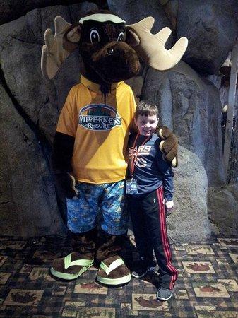 Wilderness Resort : Meeting Monty Moose