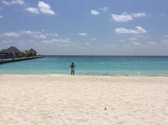Veligandu Island Resort & Spa: loving having the beach to myself