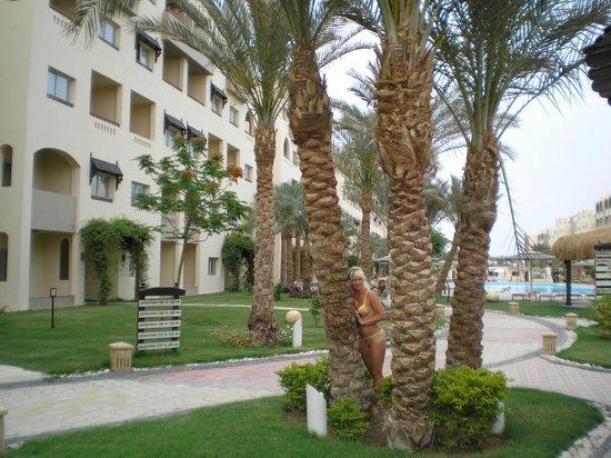 Nubia Aqua Beach Resort : красивая, ухоженная территория