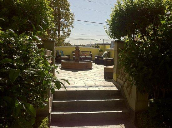 Parker Guest House : Garden area