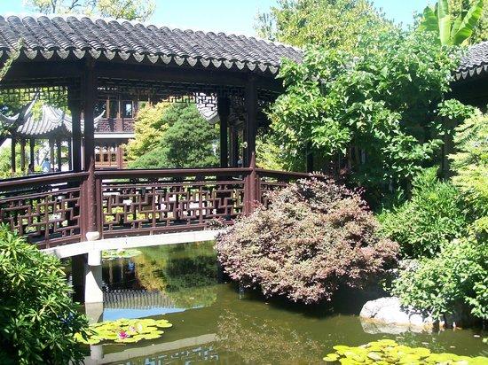 Lan Su Chinese Garden: Stillness!