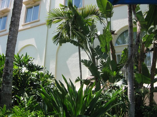 Hilton Naples: Portion of the building