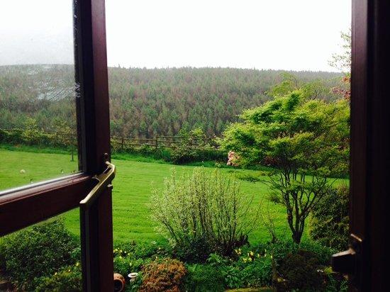 Hafod Grange Bed & Breakfast: Garden from room