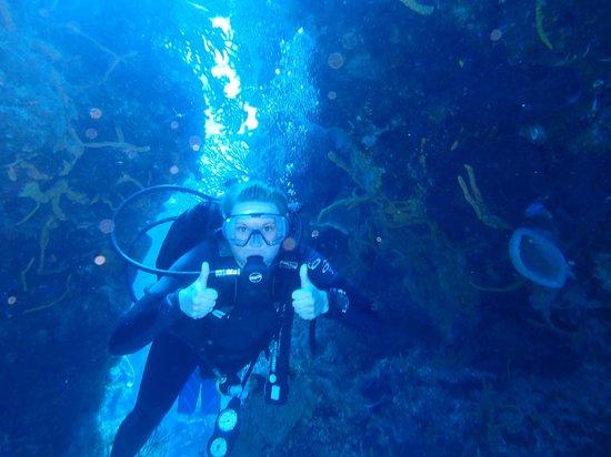 Plongee Grand Cozumel Diving: merci pour les photos