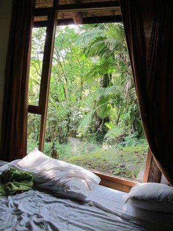 Vue d 39 une chambre de la cabine familiale picture of for Reserve une chambre