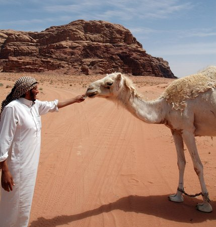 Classic Wadi Rum Tours - Private Day Tours: la guida e il dromedario
