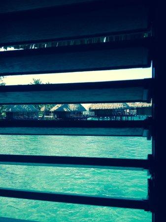 Sofitel Bora Bora Marara Beach Resort: Vue de notre piloti