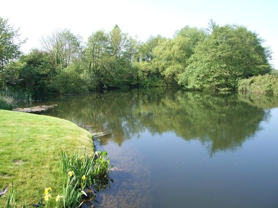 Mill Lane Bed & Breakfast: Mill Pond