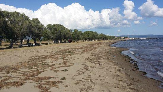 Skala Kallonis Beach: Beach of Skala Kalloni