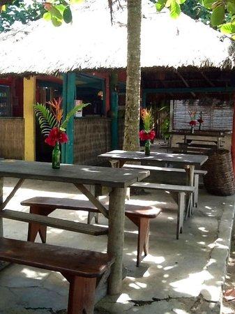 Pousada Coco Brasil: O bar...