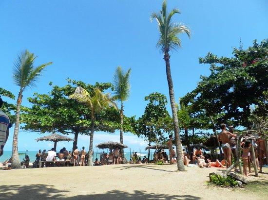 Pousada Coco Brasil: A praia