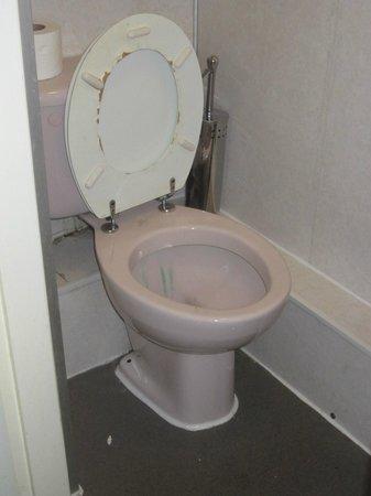 Springfield Hotel London: Il bagno