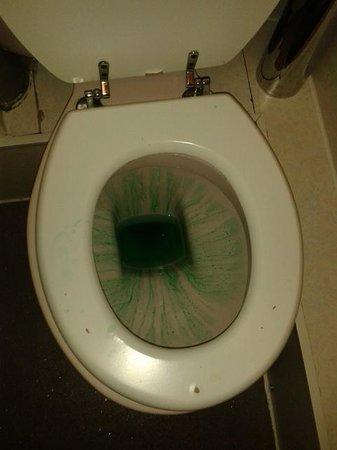 Springfield Hotel London: Per loro questa é la pulizia...il bagno al nostro arrivo!!
