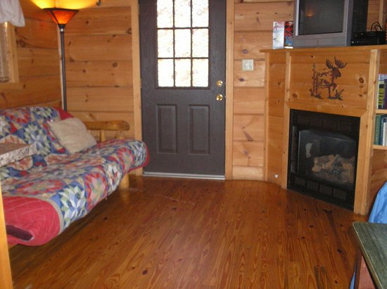 Cabins of Asheville : Cabin - living area