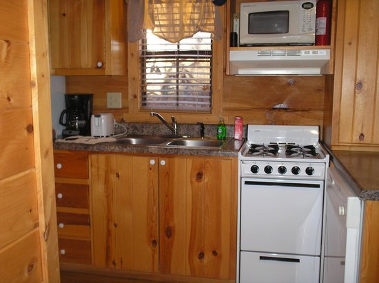 Cabins of Asheville : Cabin - kitchen
