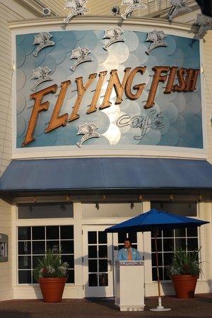 Flying Fish: Facade