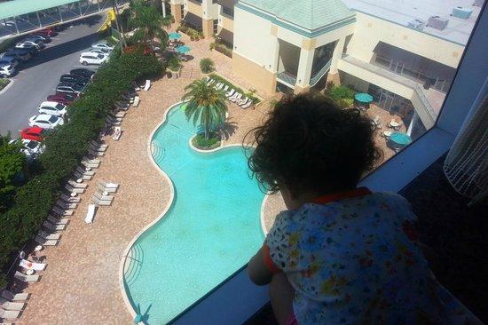Rosen Plaza Hotel: Vista da piscina