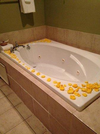 Cedar Grove Mansion Inn & Restaurant: Centennial Suite tub