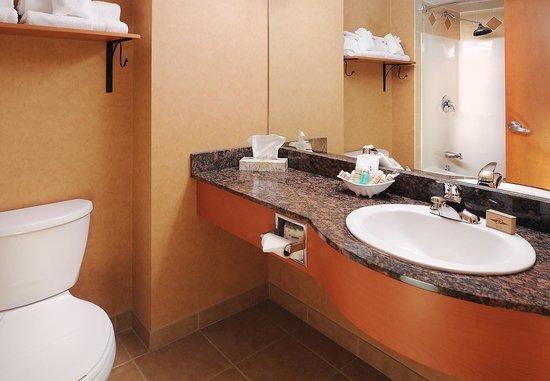Rosslyn Inn and Suites: Standard Washroom