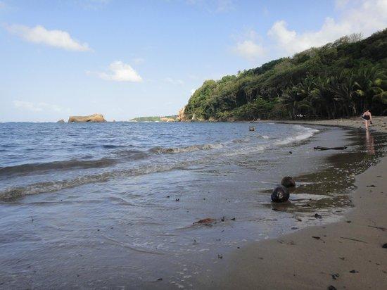 Calibishie Cove: Ein Strand, fast für sich allein!