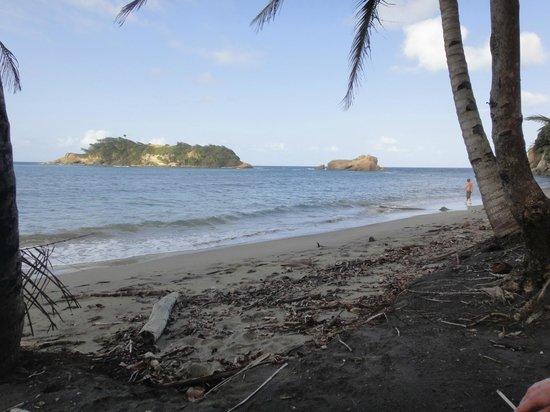 Calibishie Cove : Ein Strand, fast für sich allein!